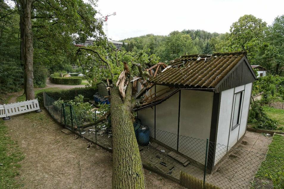 In der Gartenanlage im Waldheimer Sauergras hat der Sturm Kirsten einen Baum auf ein Gartenhaus krachen lassen.
