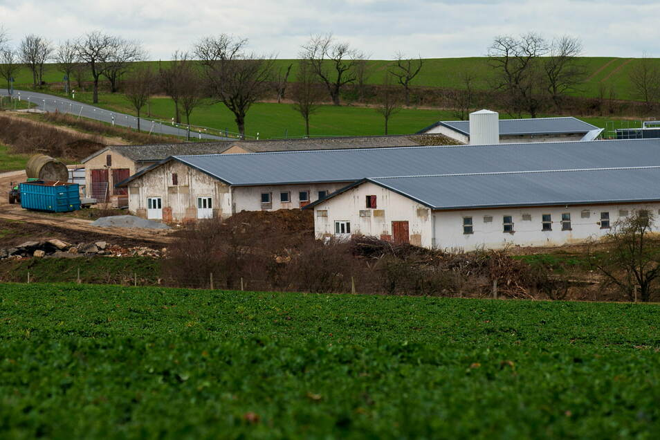 Der Ausbau der ehemaligen Schweinemastanlage in Langenwolmsdorf bei Stolpen sorgt weiter für Ärger.