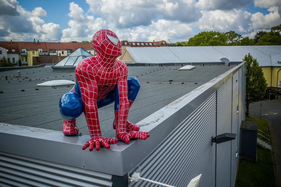 Spiderman schaut vom Dach des Cinema in Döbeln. Seit Herbst vergangenen Jahres gab es hier keine Vorstellungen. Aber am 24. Juni wollen die Betreiber wieder loslegen.