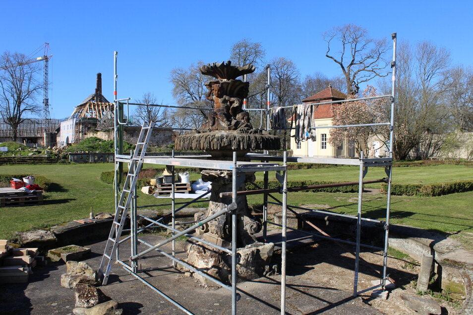 Der Brunnen in der Mitte des Rosengartens ist eingerüstet.