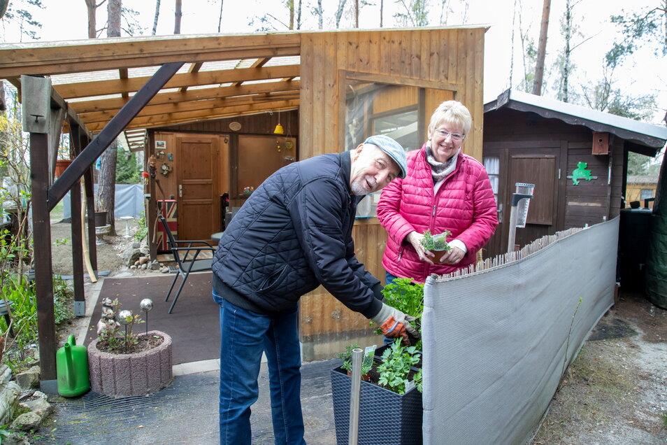 Petra und Hans-Jürgen Schröder sind Dauercamper an den Tonschächten in See. Seit fast 30 Jahren sind sie Dauercamper auf diesem Platz inmitten grüner Natur.