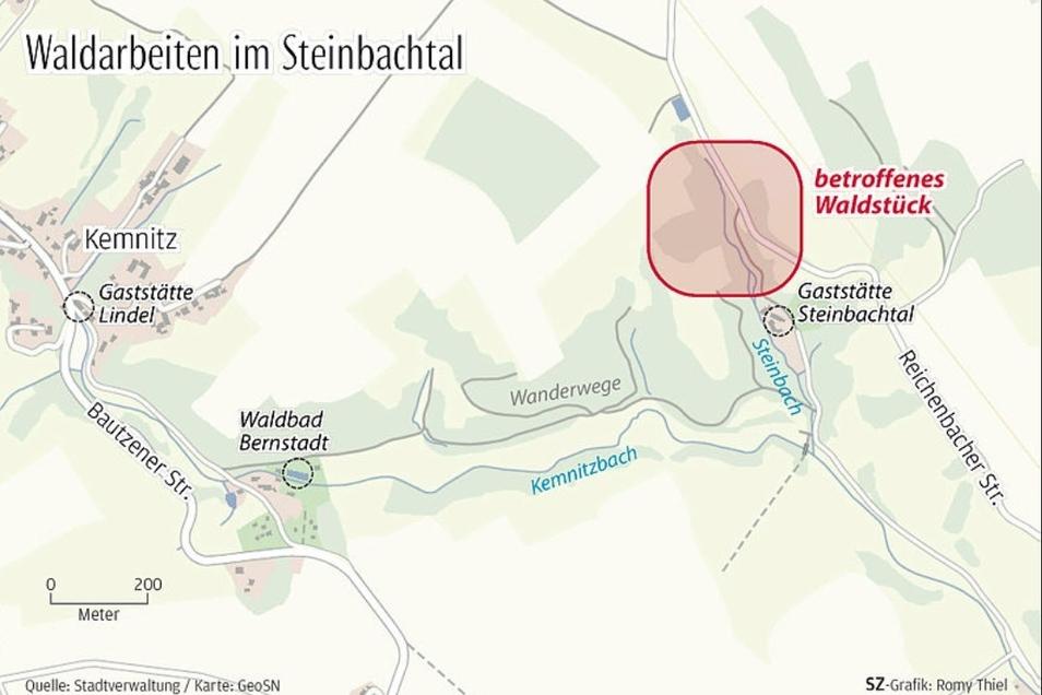 Im Waldstück oberhalb der Gaststätte Steinbachtal muss Schadholz geschlagen werden.