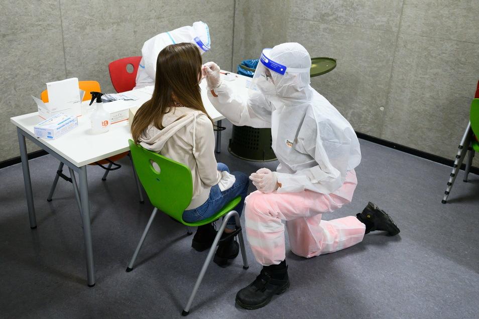 Eine Schülerin wird von einer Mitarbeitern des Deutschen Roten Kreuzes in der Mensa des Schulcampus Gehestraße in Dresden auf Corona getestet.