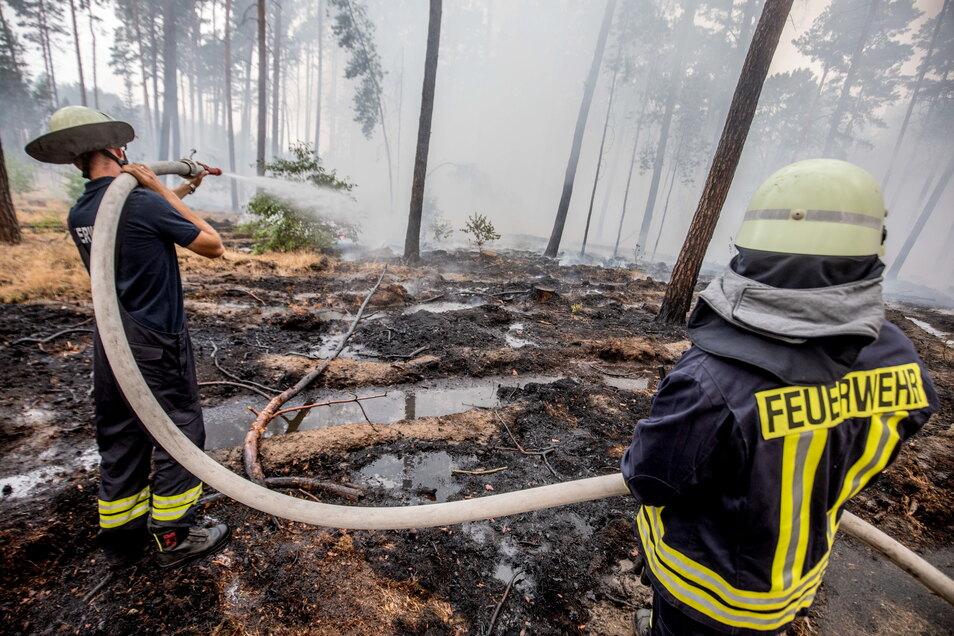 Im vergangenen Jahr gab es über 100 Waldbrände in Sachsen - sie sind oft eine große Herausforderung für die örtlichen Feuerwehren.