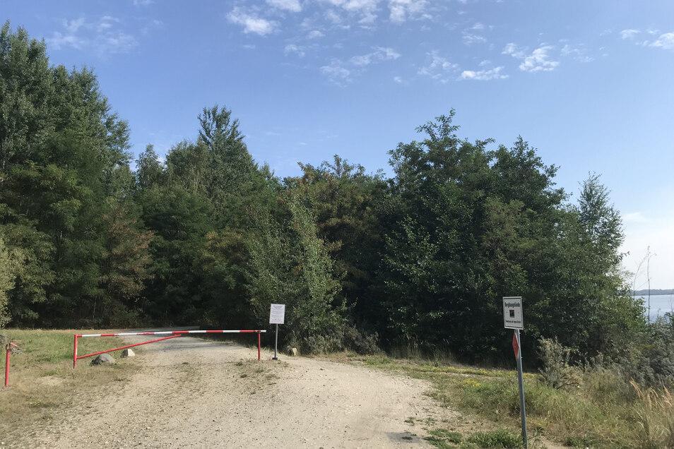 Im Naturschutzgebiet Rutschung P ist der Rundweg um den Berzdorfer See noch immer nicht asphaltiert.
