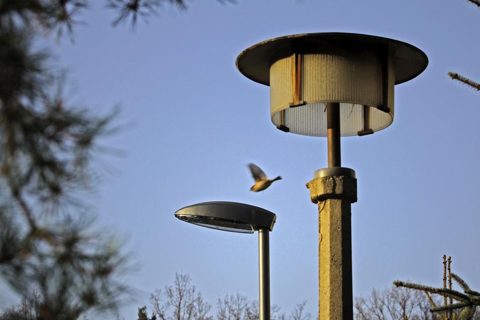 Alt und Neu: viele Kommunen ersetzen als Laternen durch LED-Technik. Auch in Ebersbach-Neugersdorf wird umgerüstet.