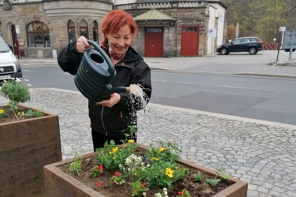 Stadträtin Claudia Mihály-Anastasio gießt die frisch gepflanzten Blumen.