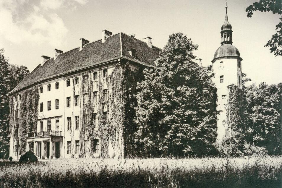 Aus der ehemaligen Turmburg entwickelte sich im Lauf der Jahre ein herrschaftliches Schloss. In den Besitz der Familie Lippe-Weißenfeld gelangte es im Jahr 1808.