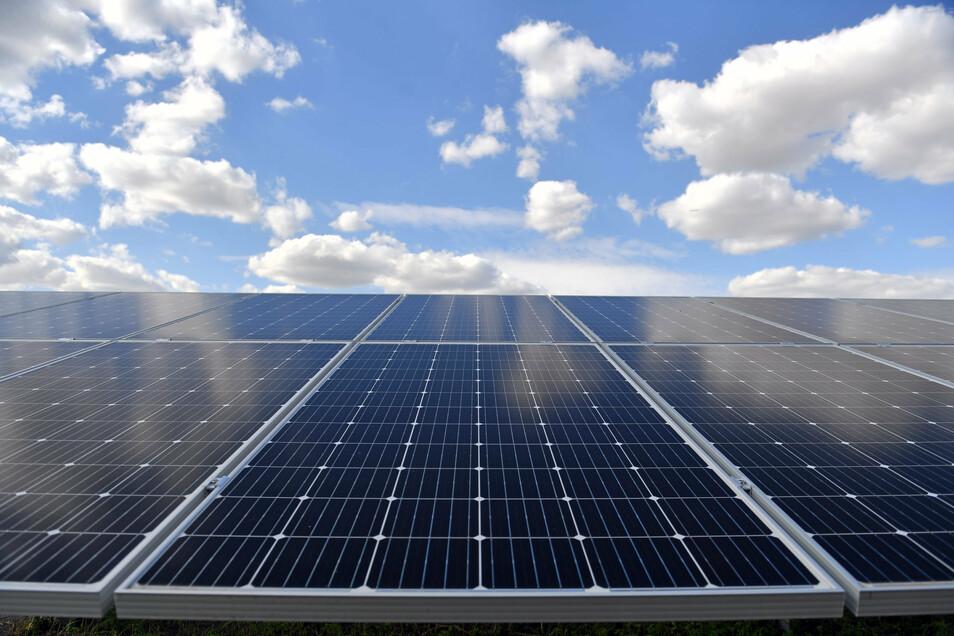 Hunderte solcher gerade erst installierten Solarmodule sind im Dorf Bornitz verschwunden.