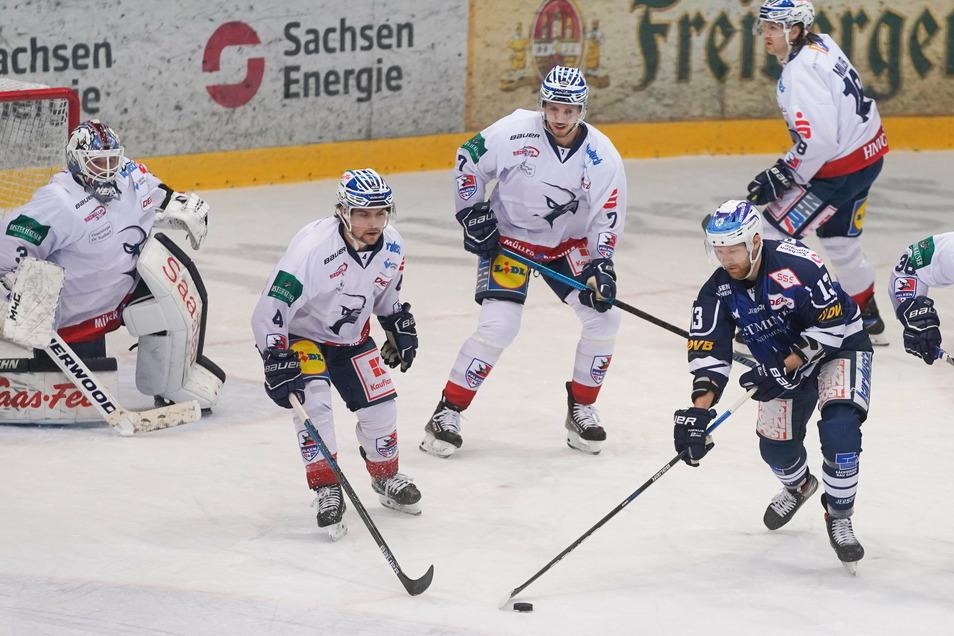 Schon am vergangenen Freitag war den Dresdner Eislöwen in eigener Halle ein Erfolg gegen die Falken gelungen.