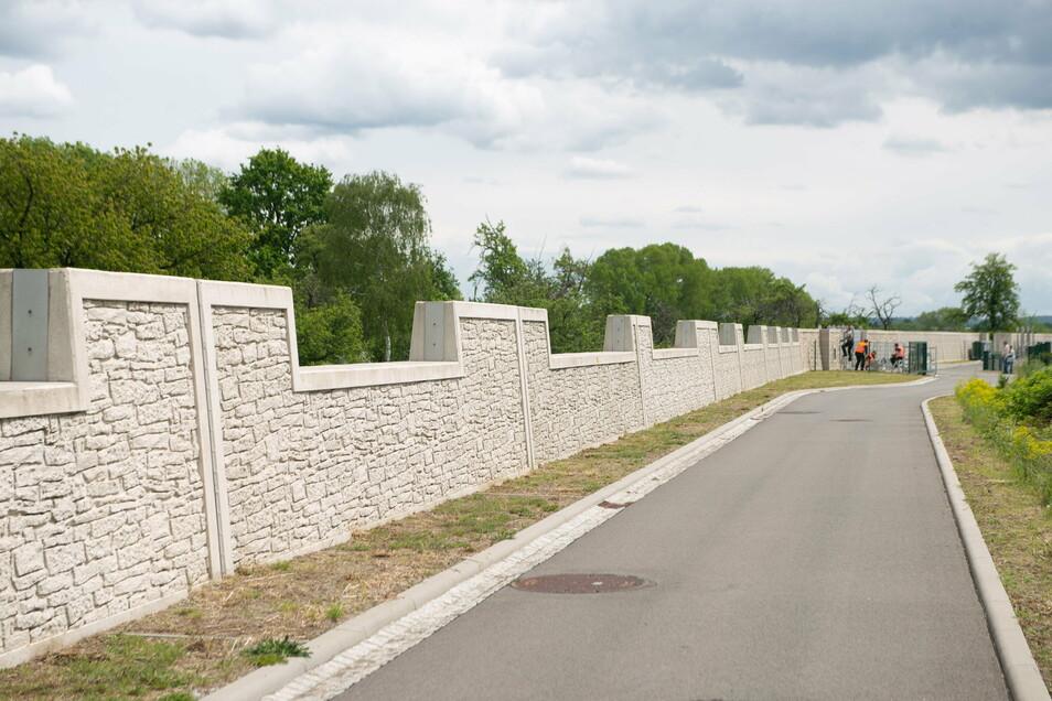 Auf eine Länge von fünf Kilometern schützen diese Wand und Deiche Stetzsch, Gohlis und Cossebaude.