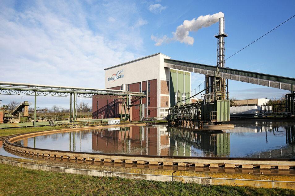 Noch dampft es aus der Brottewitzer Zuckerfabrik. Doch die Werkschließung rückt näher.