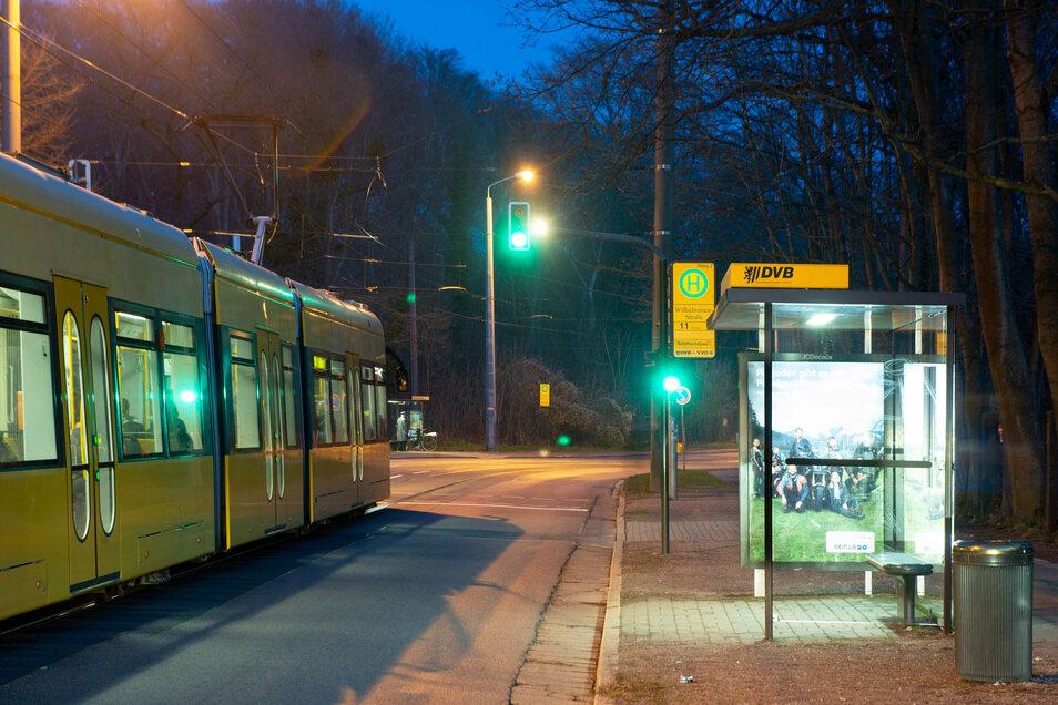 """Hier an der Haltestelle Wilhelminenstraße wird die """"Bautzner"""" ab Anfang August umgebaut."""