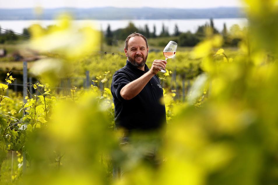 Weinberg mit Balaton-Blick: Winzer Krisztian Gyukli testet einen Rosé.
