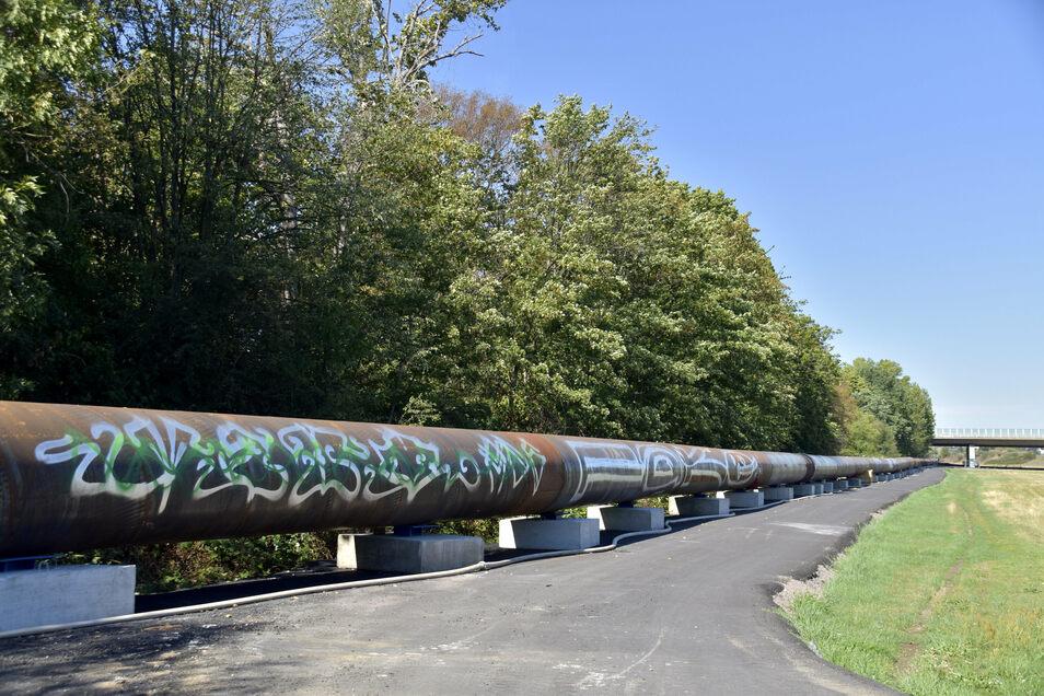 Über ein Jahr lang wird das Abwasser aus dem rechtselbischen Dresdner Gebiet durch diese Leitung durch die Flutrinne zum Klärwerk fließen.
