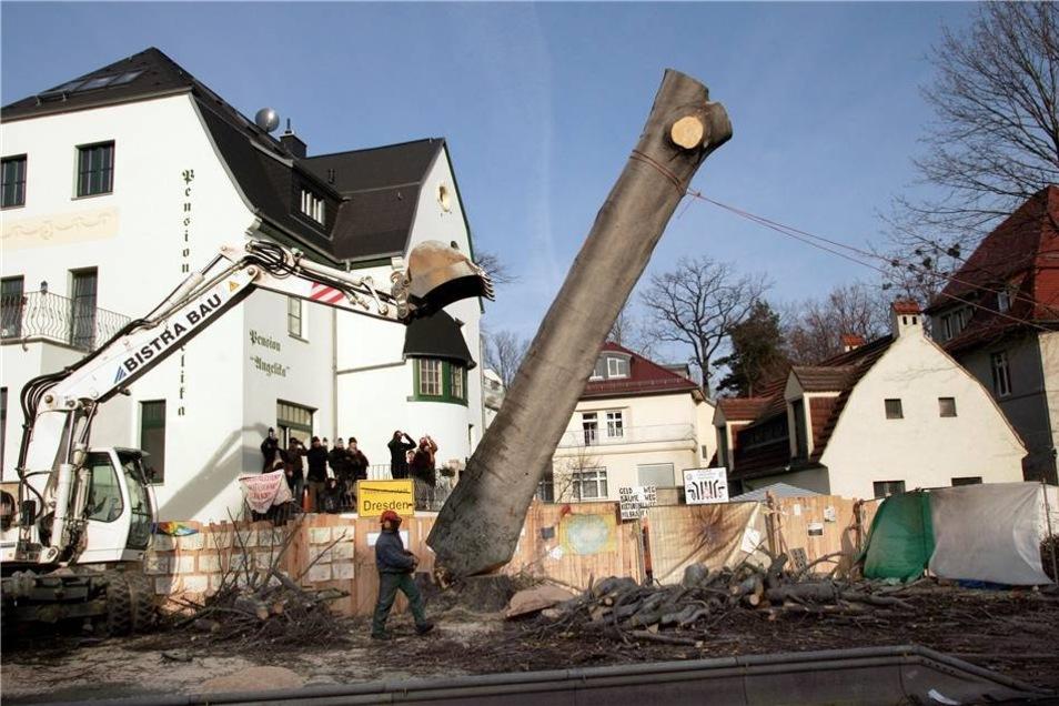Baum-Protest im Januar 2008  Anschließend begannen die Fällarbeiten. Die Arbeiten wurden unter Polizeischutz ausgeführt. Etwa 100 Demonstranten protestieren mit Pfiffen und Buh-Rufen gegen die Fällung alten Baumes. Die umliegenden Straßen wurden weiträumig gesperrt.