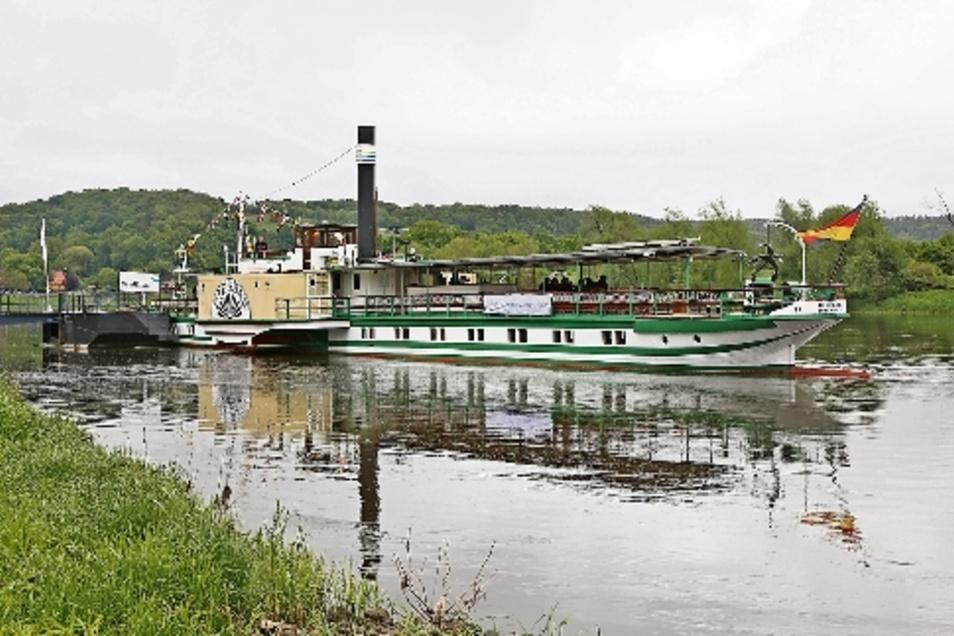"""Dampfschifffahrt: Die Dampfer der Weißen Flotte fahren – bei genug Wasser – bis Diesbar-Seußlitz. Dort bekam der Dampfer """"Diesbar"""" im Mai ein Wappen der Gemeinde angebracht."""
