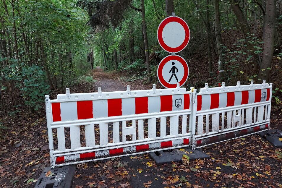 Am Rauschenthaler Weg werden Wanderer seit einem halben Jahr ausgebremst. Wegen der Gefahr, dass Bäume umstürzen, ist der beliebte Wanderweg in Richtung Kriebethal seit Monaten gesperrt.