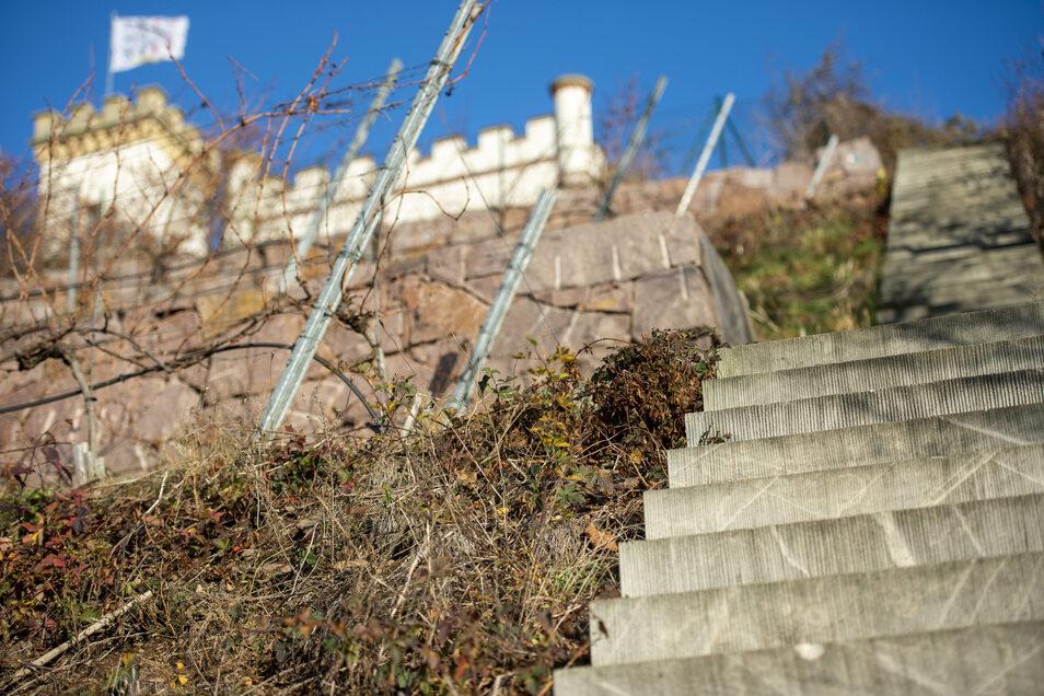 Spaziergänger wollen wieder an der Friedensburg vorbei kommen.