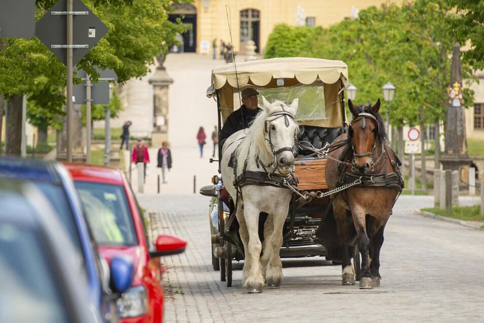 Seit ein paar Tagen zurück sind auch die zum Moritzburger Ortsbild gehörenden Gespanne.
