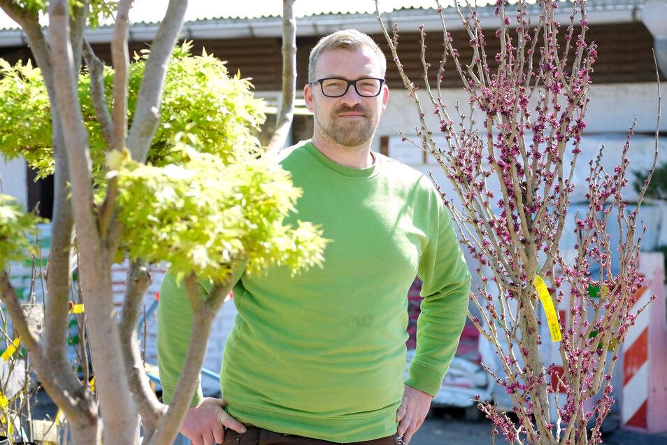 Albert Tamme führt gemeinsam mit seinem Bruder die gleichnamige, sechs Hektar Anbaufläche umfassende Meißener Baumschule. Neben Ziergehölzen seien derzeit vor allem Obstbäume gefragt, so der Firmenchef.