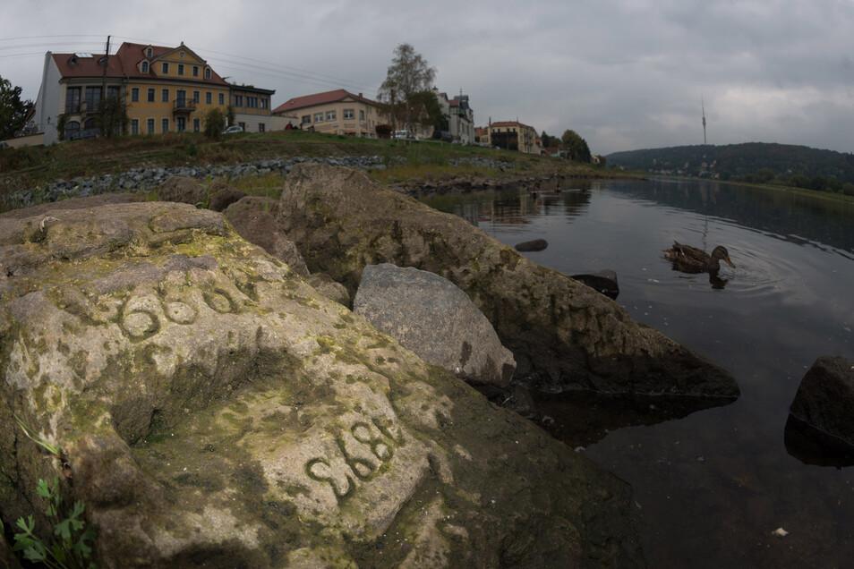Dieser Hungerstein kann derzeit wieder unterhalb der Häuser Laubegaster Ufer 26/27 besichtigt werden.