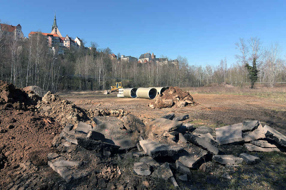 Auf der Muldenwiese hat die Stadt Leisnig die einzige Fläche für Gedenk- und Spendenbäume ausgemacht.