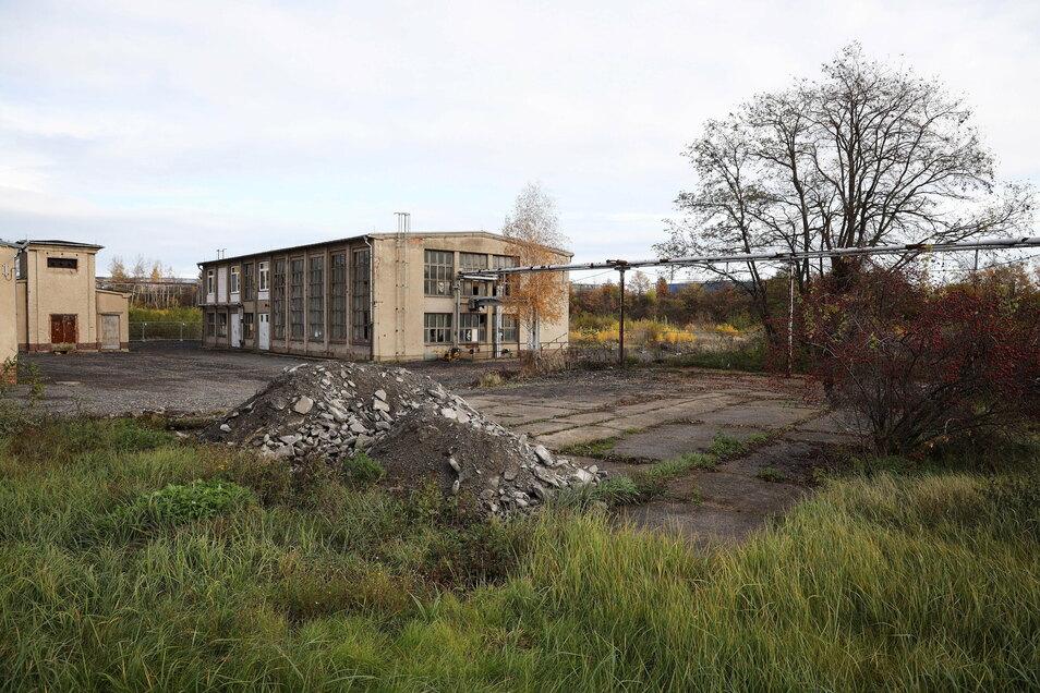 Blick auf das frühere Aropharm-Werksgelände im November 2020. Ein früherer Riesaer hofft auf historische Ansichten aus DDR-Zeiten.