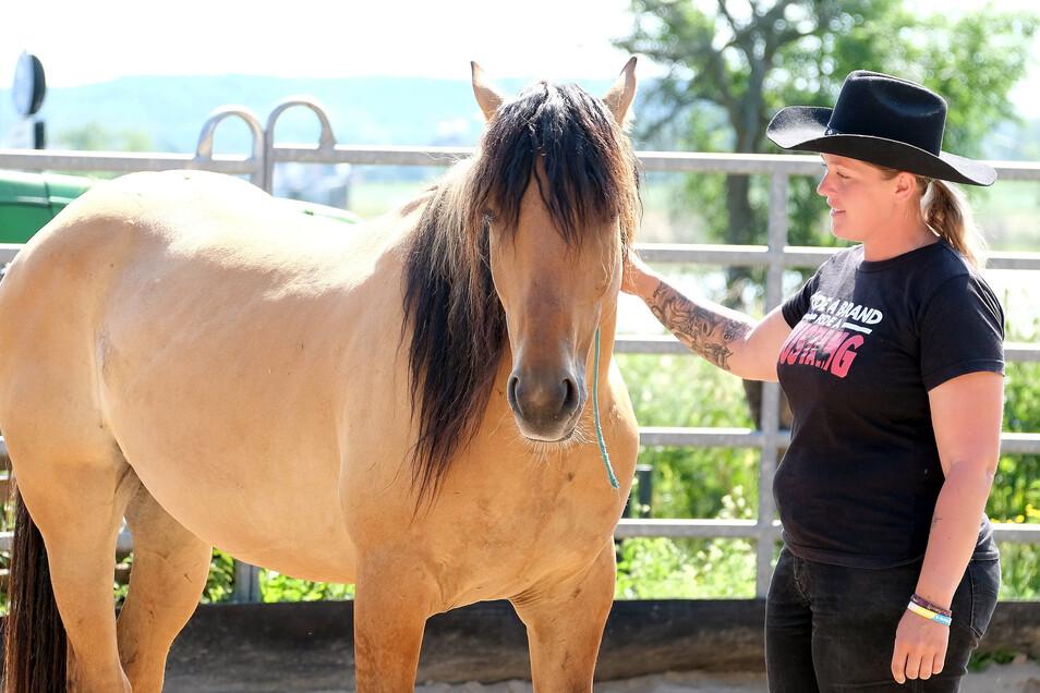 Pferdewirtin Janell Baader bildet in Scharfenberg einen Mustang für das Leben mit Menschen aus. Dafür hat sie nur 140 Tage Zeit.