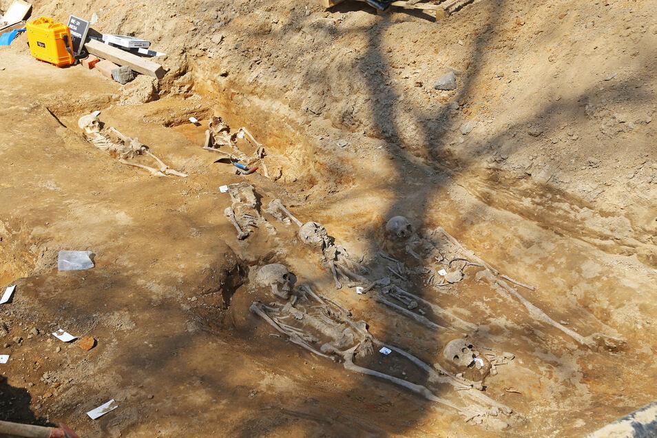 Blick nach Osten: Die Bestattungen auf dem Rathausplatz in Riesa folgten einem klaren Muster. Grabbeigaben wurden nur vereinzelt gefunden.