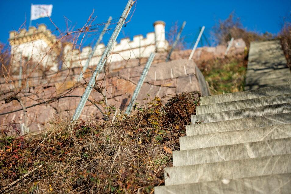 Am Ende dieser Treppe unter der Friedensburg soll im September der Weg weiterführen.