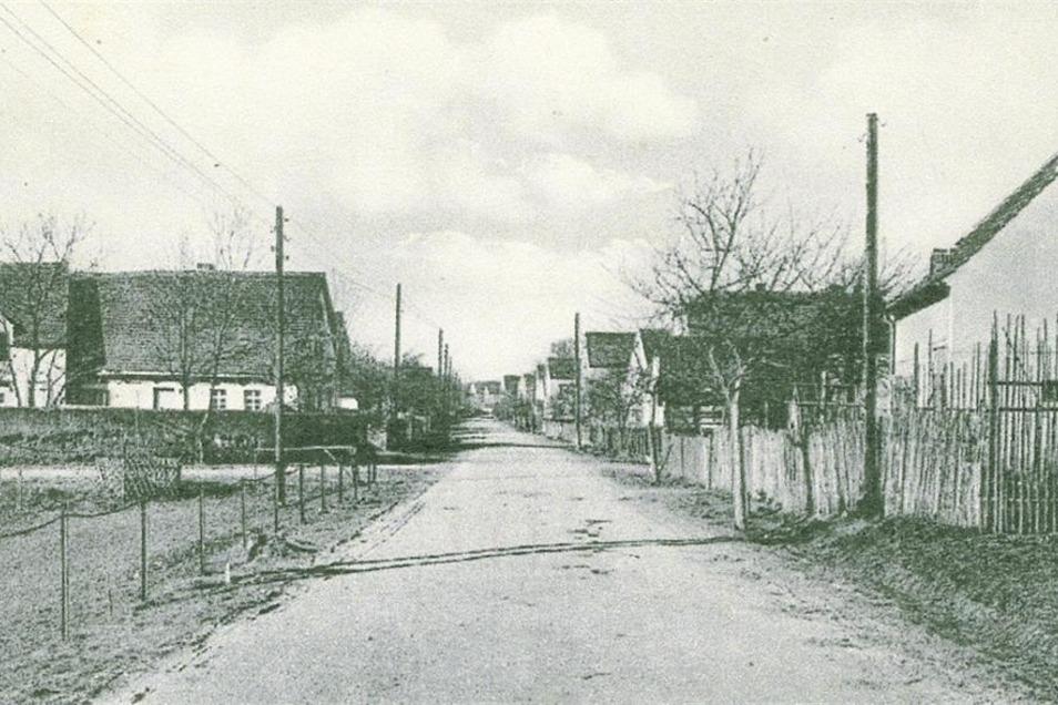 ist ein Sonderfall. Das Dorf wurde 1938 geräumt, später von schlesischen Kriegsflüchtlingen bewohnt. Sie gründeten hier die erste LPG der Region – und durften bleiben. Das Dorf blieb.