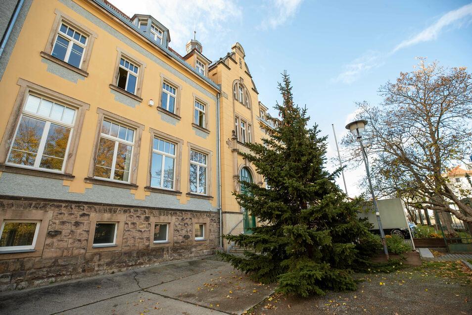 Am Montag wurde die Tanne vor dem Bannewitzer Rathaus aufgestellt.