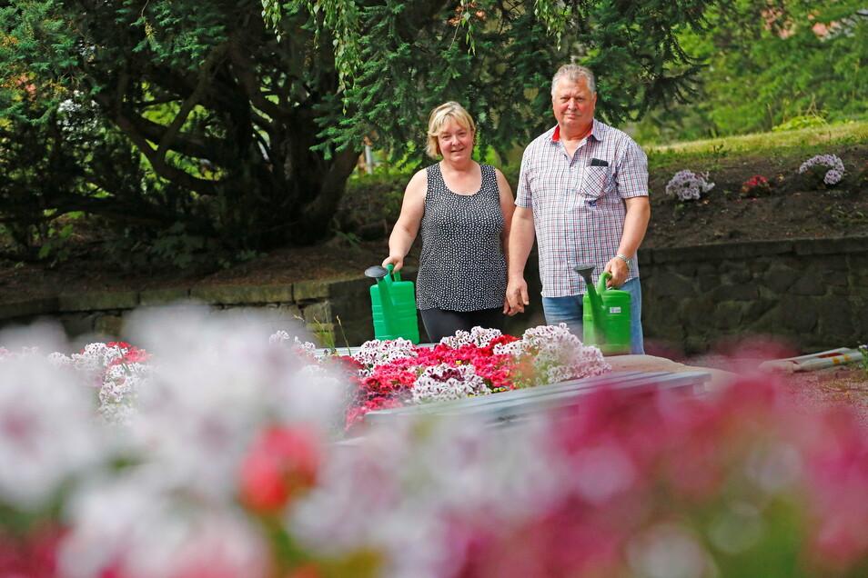 Guntram Schäfer und seine Frau Marlies kümmern sich mit großem Engagement um den Stadtpark in Pulsnitz. Besonders im Sommer sind sie fast täglich mit der Gießkanne unterwegs.