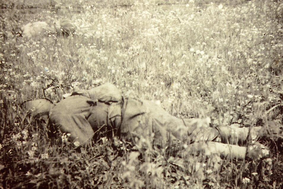 Gefallene Sowjetsoldaten vor den Stellungen von Marcel Weises Einheit. Unter immensen Opfern vertreibt die Rote Armee im Sommer 1943 die Deutschen aus der Ostukraine.